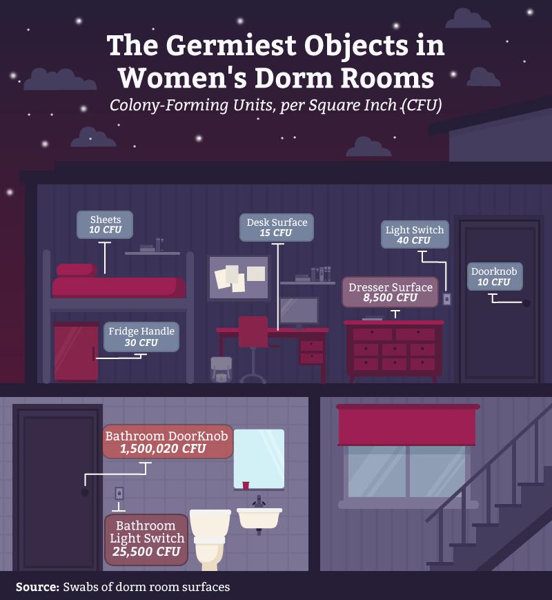 03_germiest_objects_women